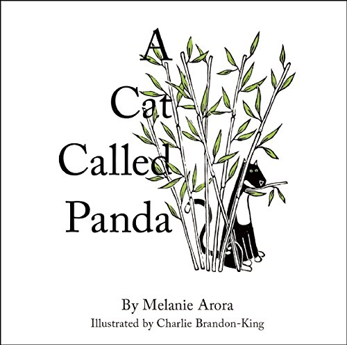 A Cat Called Panda by Button Books