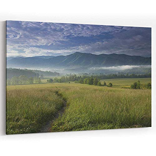 Path into Cades Cove Canvas Prints Wall Art for Modern Home Decor Stretched-Framed Ready to Hang