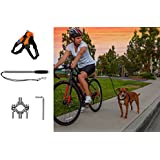 Securpup Dog Bike Leash with Harness (2-Piece Set) Adjustable Bicycle, Cycling, Running Pet Attachment | Reflective Webbing | Easy Installation (Medium, Orange)
