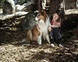 Lassie - Collection 2
