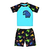 Kids Boy Quick Dry Dinasour Print Swimwear 3pcs Sun Protection Bathing Suit (3-4T)
