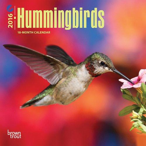 Download Hummingbirds - 2016 Mini Wall Calendar 7 x 7in pdf