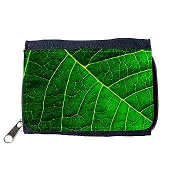 le portefeuille de grands luxe femmes avec beaucoup de compartiments // M00153691 Orgánica de fondo verde Macro // Purse Wallet