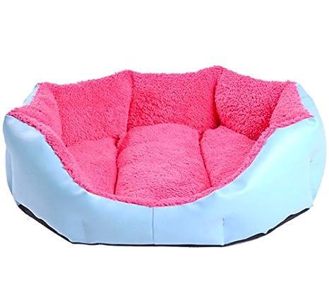 Cama para perros azul/rosa