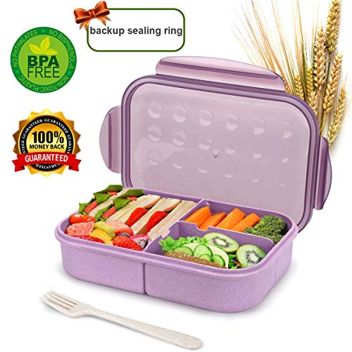 Most Popular Lunch Boxes