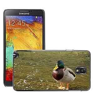 Super Stella Slim PC Hard Case Cover Skin Armor Shell Protection // M00145332 Duck Water Animal // Samsung Galaxy Note 3 III N9000 N9002 N9005