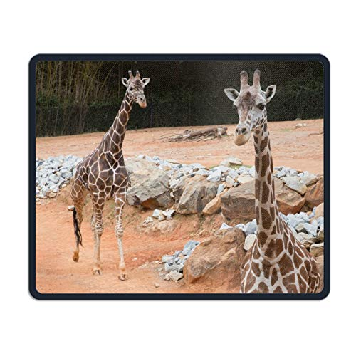 Giraffe Zoo Atlanta Mouse Pad Custom Gaming Mousepad Rubber Mouse Mat