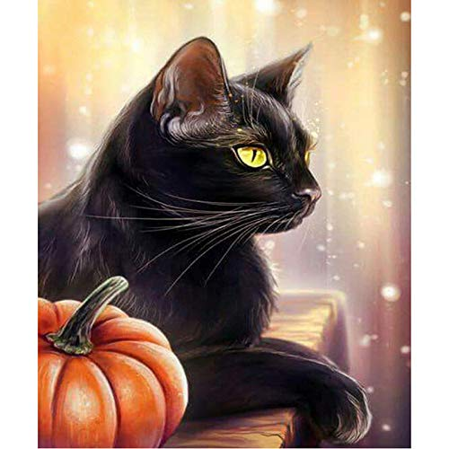 Diy Canvas Acrylic Paint By Numbers With,Halloween Pumpkin Black Cat,16X20 Inch Without Frame -