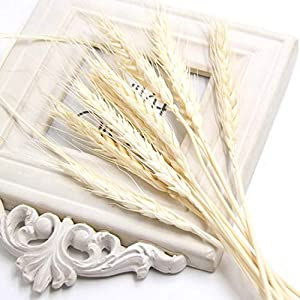 Dried Flowers - 40PCS Artificial Autumn Wheat Flower Bouquet Wreath Fake Flowers DIY Scrapbooking&Home Garden&Wedding Party Decoration 15