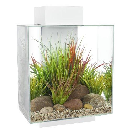 Fluval Edge 12-Gallon Aquarium with 42-LED Light, White
