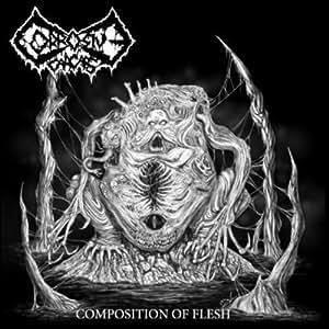 Composition Of Flesh