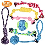 Puppy Toys & Dog Play Toys - Fetch Toys and Chew Toys for Small Dogs and Puppies - Set of 7 Value Pack - Chewing Toy - Teething Toy - Tug of War