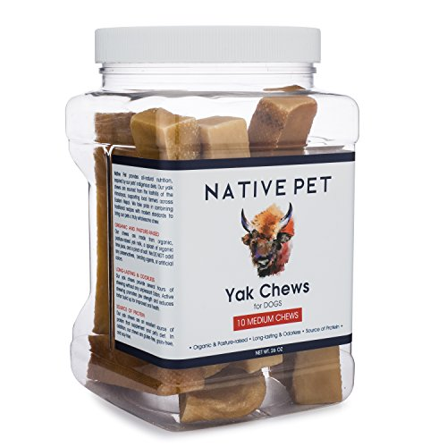 Native Pet Yak Chews for Dogs (10 Medium Chews per Jar) – Pasture-Raised Himalayan Yak Chews for Mid-Size Dogs – Protein-Rich Reward Treat for Improved Oral Health