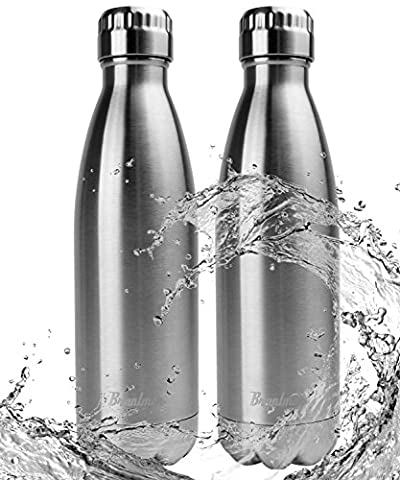 Bruntmor, 17 oz Double Wall Vacuum Insulated 18/10 Stainless Steel Water Bottle Cola Thermos Bottle Keeps cold up to 24 hours, hot up to 12 hours (17oz. 2 - Silver Travel Tumbler