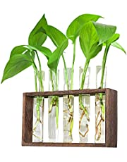 Ivolador Wall Mounted Hanging Planter Test Tube Flower Bud Vase Tabletop Glass Terrariumin Wooden Stand with 5 Test Tube Perfect for Propagating Hydroponic Plants Home Garden Wedding Decoration