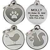 GoTags Pet ID - Playful, Custom Engraved Dog