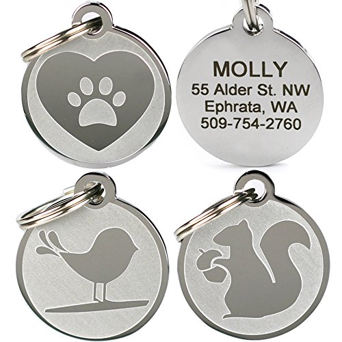 GoTags Playful, Custom Engraved Pet ID Tags, Solid Stainless Steel, Personalized Dog and Cat Pet ID with up to 4 Lines of Text, Cute, Durable and Long-Lasting (Pet Paw Id Tag)