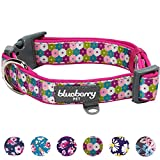 Blueberry Pet 6 Patterns Soft & Comfy Endless Spring Floral Print Designer Padded Dog Collar, Small, Neck 12''-16'', Adjustable Collars for Dogs