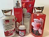 Bath & Body Works JAPANESE CHERRY BLOSSOM Deluxe Gift Set Lotion ~ Cream ~Fragrance Mist ~ Shower Gel + Small Sanitizing Hand Gel Lot of 5