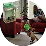 Tumbo's Indoor Tiny Tugger indoor exercise toy for small dogs under 25 lb that are energetic doggies (soft inside toy hangs on limited stretch bungee from your ceiling for fun and safe solo play) Review
