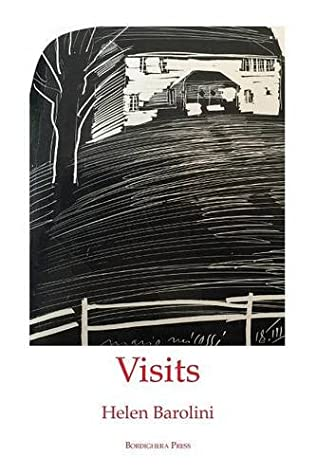 book cover of Visits