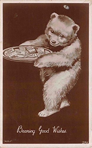 Real Photo Postcard Teddy Bear Holding a Tray Bearing Good Wishes~114762 (Bearing Postcard)