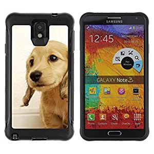Suave TPU GEL Carcasa Funda Silicona Blando Estuche Caso de protección (para) Samsung Note 3 / CECELL Phone case / / Golden Retriever Puppy British Dog Yellow /
