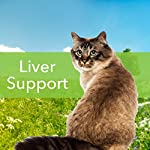 Pet Wellbeing - Milk Thistle for Cats - Natural Support for Feline Liver Health - 2oz (59ml) 11