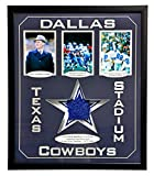 COWBOYS TEXAS STADIUM AUTHENTIC GAME USED END ZONE TURF COA COLLAGE #D/25 DALLAS