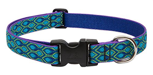 Lupine Collar Dog Large - LupinePet Originals 1