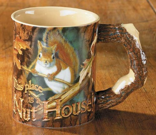 Wild Wings This Place is A Nut House Squirrel Mug by Mia Lane