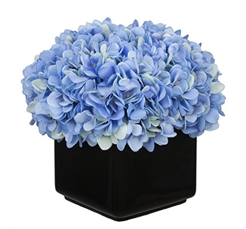 Hydrangea Arrangement in Large Black Cube Ceramic Color: Blue
