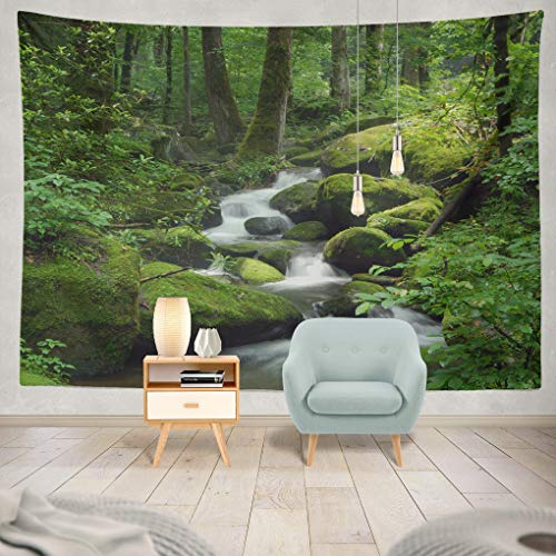 (ONELZ Decor Collection, Forest Waterfall Water Stream River Tree Rain Spring Rock Landscape Green Bedroom Living Room Dorm Wall Hanging Tapestry 60
