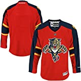 Florida Panthers NHL Hockey Toddler 2-4T One Size Team Jersey Red