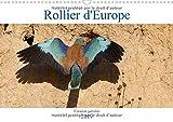 Rollier d'Europe (Coracias garrulus) 2019: Decouvrez le rollier d'Europe, un oiseau bleu mediterraneen magnifique. (Calvendo Places) (French Edition)