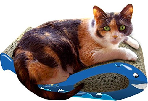 (Imperial Cat Whale Scratch 'n Shape, Blue, Small)