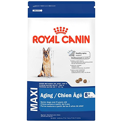 Royal Canin SIZE HEALTH NUTRITION MAXI Aging 8+ dry dog food, 30-Pound