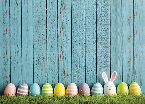 AIIKES 7x5FT Easter Flowers Eggs Photography Backdrop Blue Wooden Floor Scene Green Grass Photography Backgrounds Custom Photographic Backdrops for Photo Studio 11-431 ()