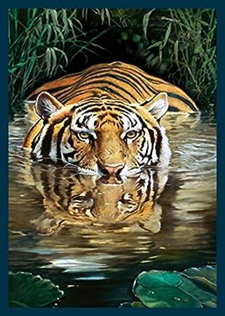 Bild Mit Rahmen Renato Casaro   Bamboo   Digitaldruck   Holz Blau, 30 X 42cm