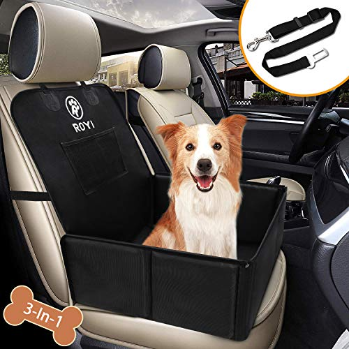 Seguridad perros viajar en coche