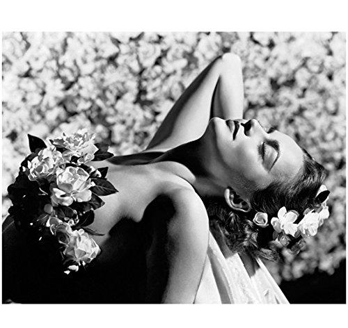 Olivia de Havilland floral beauty 8 x 10 Inch Photo