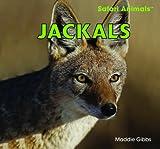 Jackals, Maddie Gibbs, 1448825059