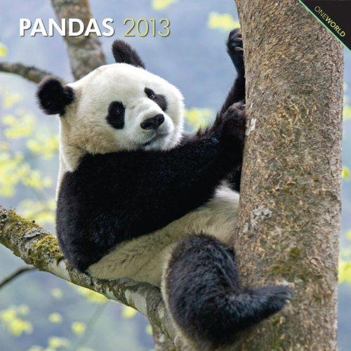 Pandas 2013 - Pandabären - Original BrownTrout-Kalender