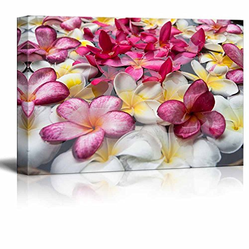 - wall26 - Canvas Prints Wall Art - Multicolored Plumerias Floating in The Water | Modern Wall Decor/Home Decoration Stretched Gallery Canvas Wrap Giclee Print. Ready to Hang - 12