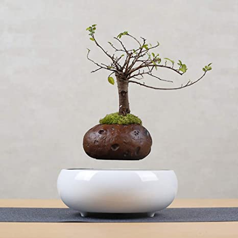 Amazon Com Magnetic Levitating Air Bonsai Flower Pot Home Office Desktop Decor Suspension Floating Pot Plant Craft Gifts E Kitchen Dining
