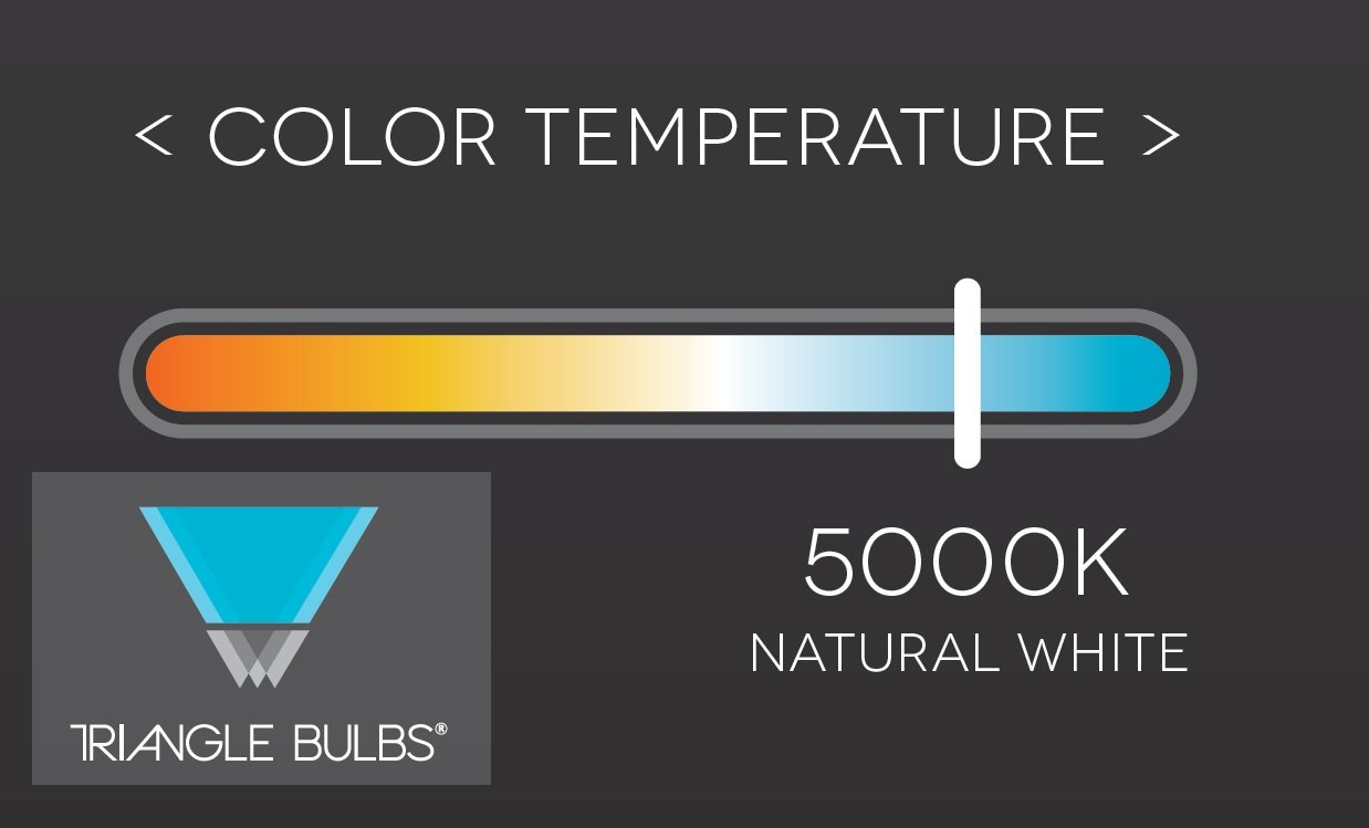 Triangle Bulbs FML27/EX-D, FML27/50 Reading Lamp Light Bulb, 5000K Natural Daylight Color, FML27EX/N, T50024