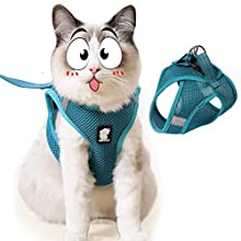 Diizeco Cat Harness and Leash Set for Walking Escape Proof Soft Mesh Cat Vest Harness with Reflective Strap Ultra Light Adjustable Kitten Collar Comfort Fit for Small Medium Large Cats(M, Turquoise)