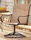 LivingXL Swivel Outdoor Chair (Khaki)