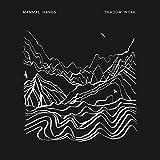 Shadow Work (Bonus Track)