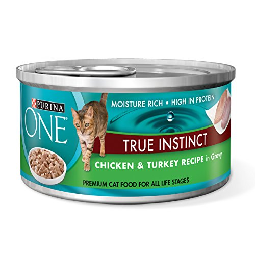 Purina ONE True Instinct Chicken & Turkey Recipe in Gravy We